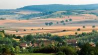 Često opisivana kao ''ostrvska'' planina Vojvodine Fruška gora pripada niskim planinama. Iako je niska planina njena visina je uticala na bitno drugačije prirodne odlike od okolnog nizijskog prostora. Atribut ''ostrvska'' ne opisuje samo njen reljefni odraz uniziji već i ''ostrvsku'' geološkustrukturu, biljni i životinjski svet kao i klimatske i hidrološke odlike u Panonskoj niziji što je uslovilo i drugačiji istorijski i kulturni razvoj i identitet prostora.